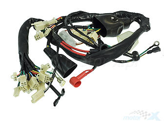 Cable harness / wiring Ogar 202