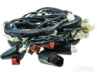 Cable harness / wiring ATV XY250ST-9C automatic
