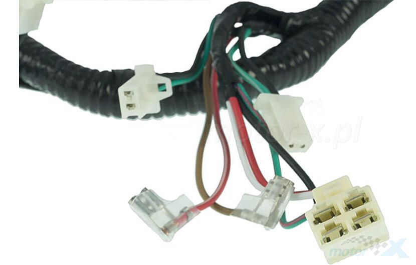 cable harness / wiring cpi aragon 50